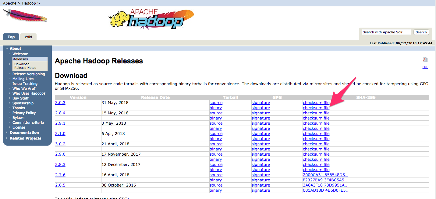 Screenshot highlighting the .mds file